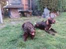 Bea und Norris